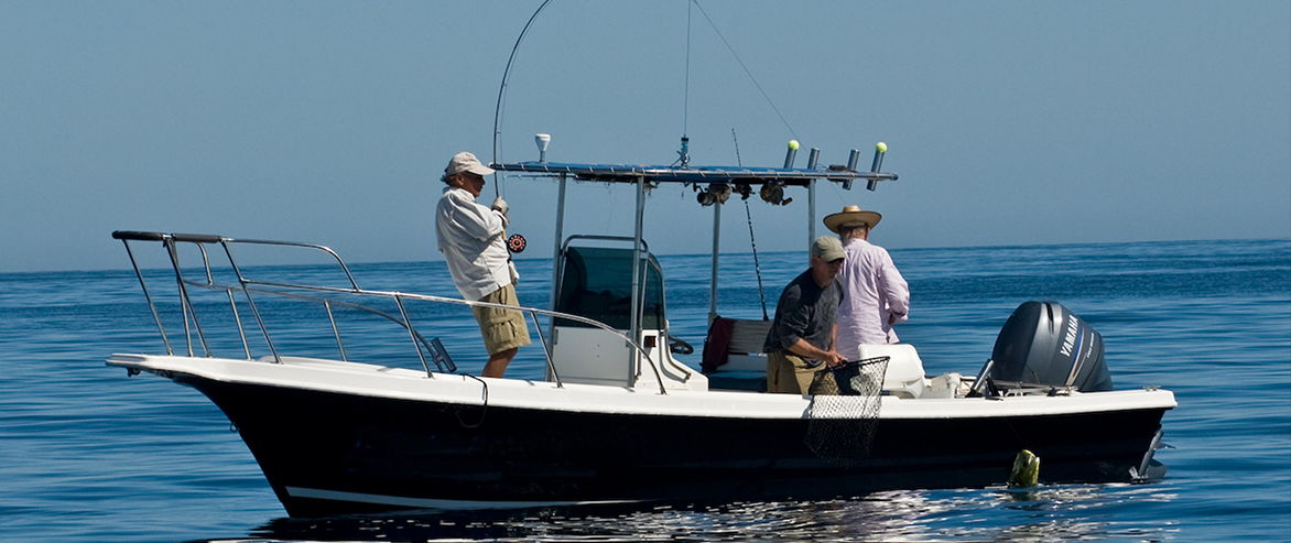 Ammt for Mexican fishing license